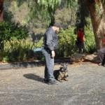 Dog Training Encinitas