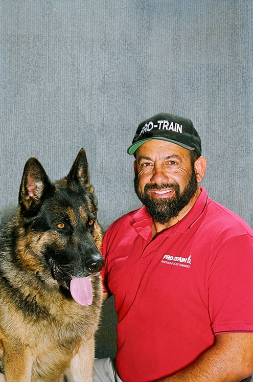 Contact Us Professional Dog Training San Diego
