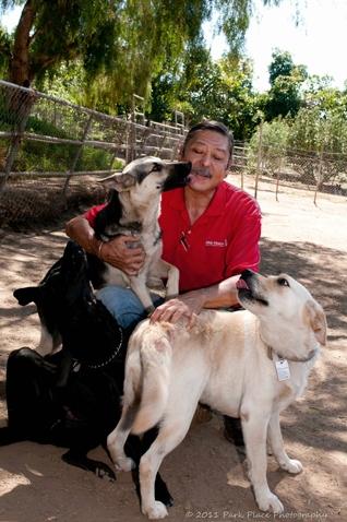 Professional Dog Training San Diego