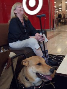 service dog training, rescue dog, disability