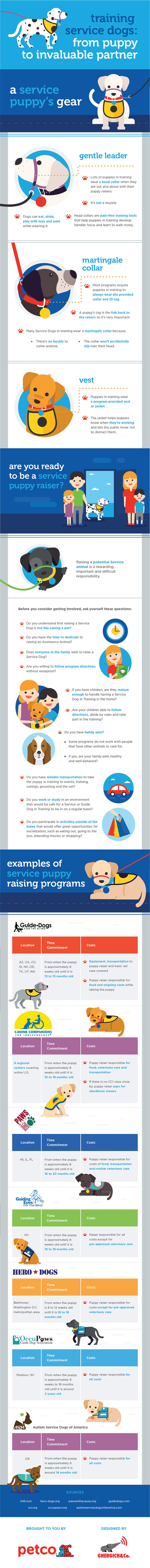 Service Dog Infographic