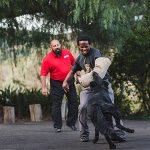 Aggressive Dog Training San Diego